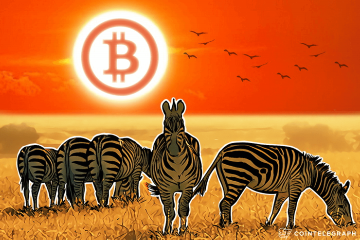 automatizált bitcoin kereskedő sárkányok den bitcoin üzlet eladó
