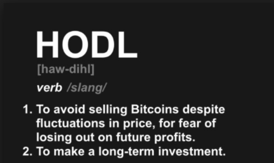profit bitcoin hodl