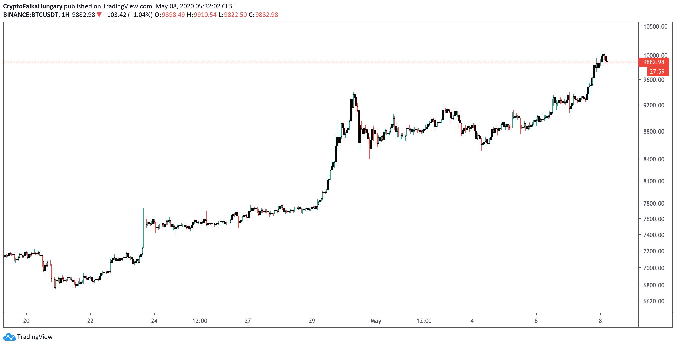 Bitcoin ára 10 000$ I Cryptofalka
