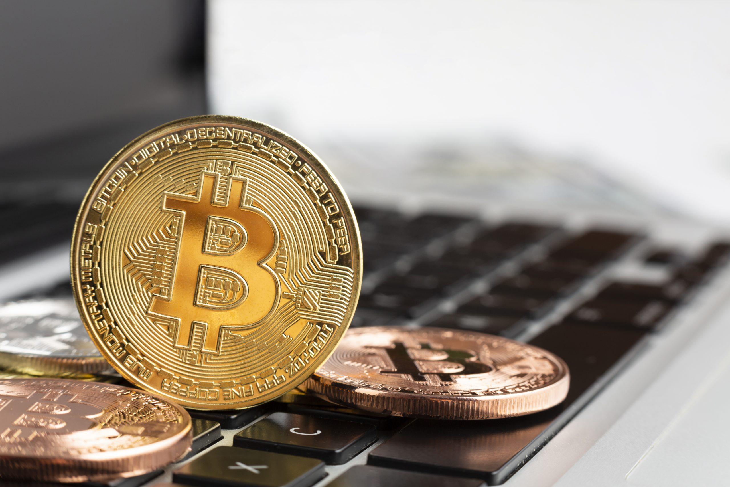 Bitcoin készlet HODL I Cryptofalka