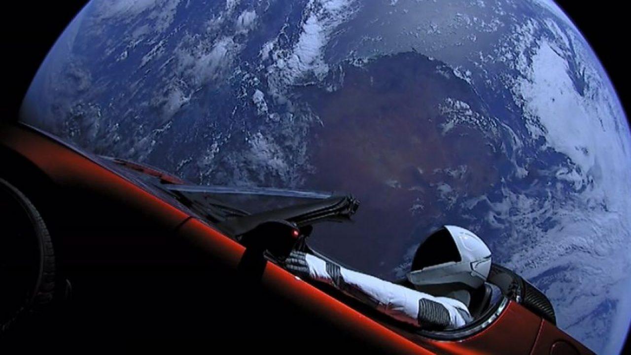 Elon Musk Tesla I Cryptofalka