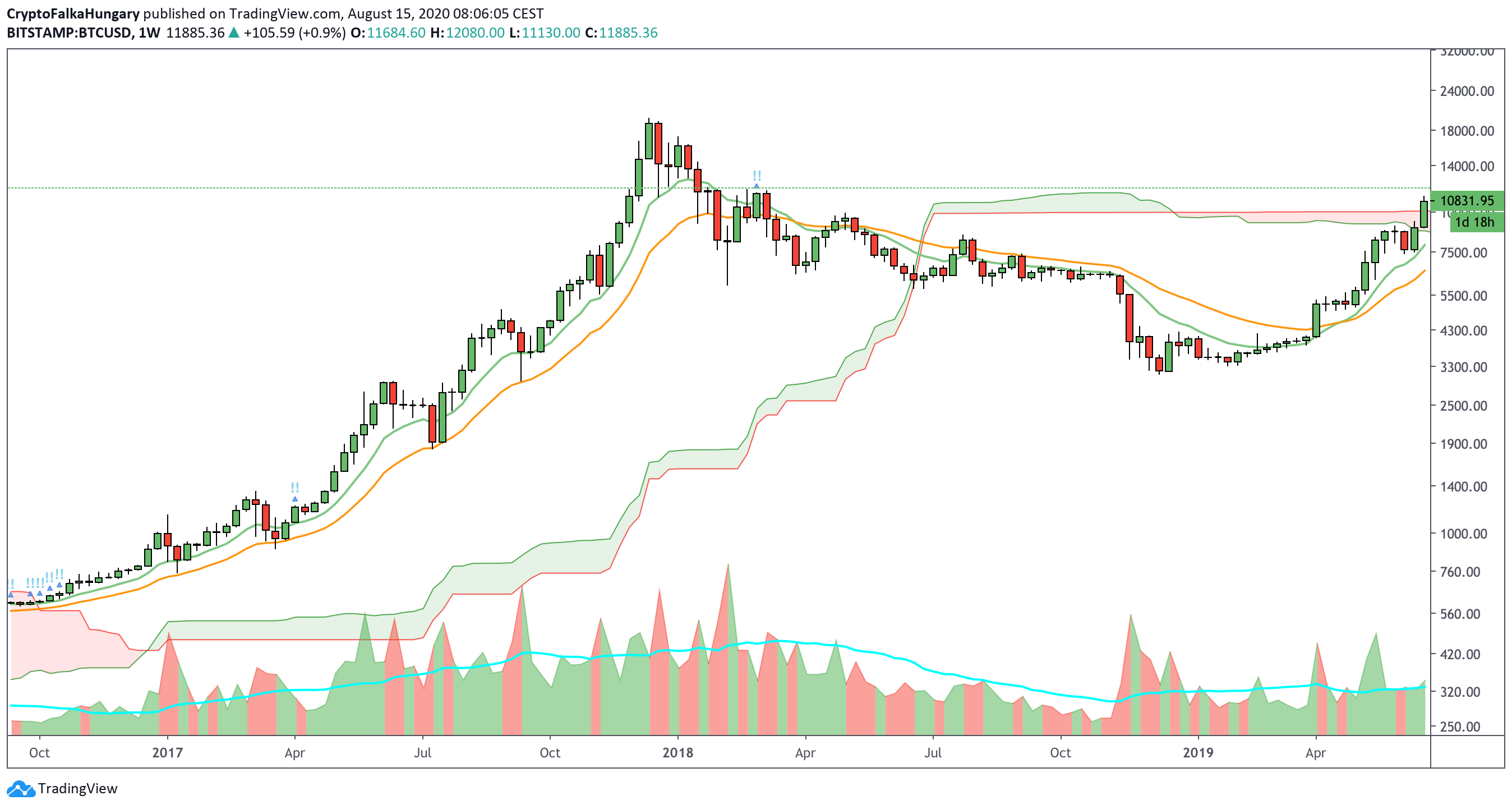 Bitcoin medve piac I Cryptofalka
