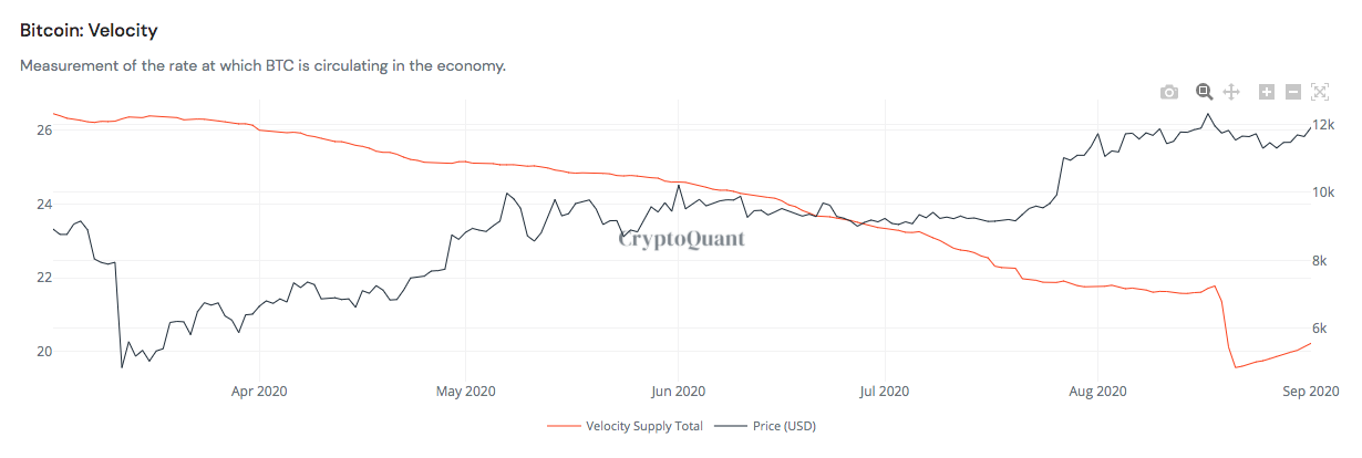 Bitcoin-velocity I Cryptofalka
