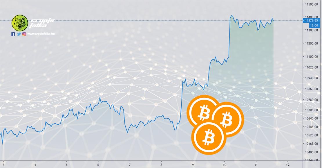 Bitcoin és kriptovaluták dinamika I Cryptofalka