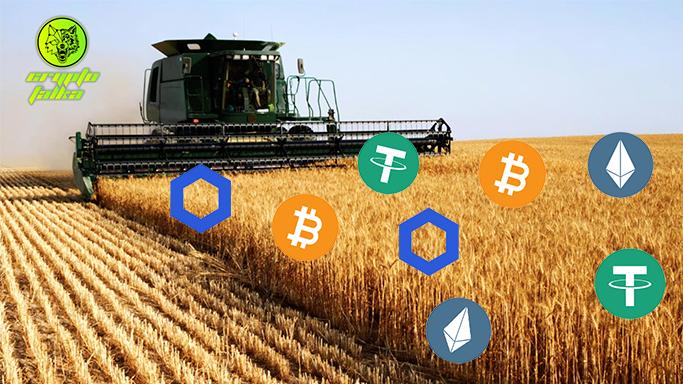 Yield farming I Cryptofalka