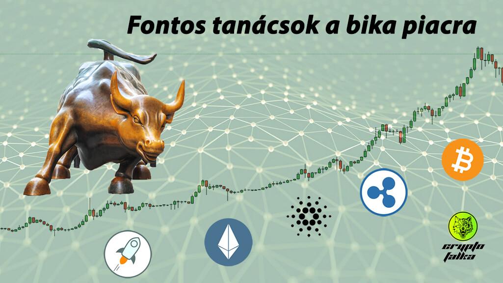 Bitcoin és kriptovaluták bika piac fontos I Cryptofalka