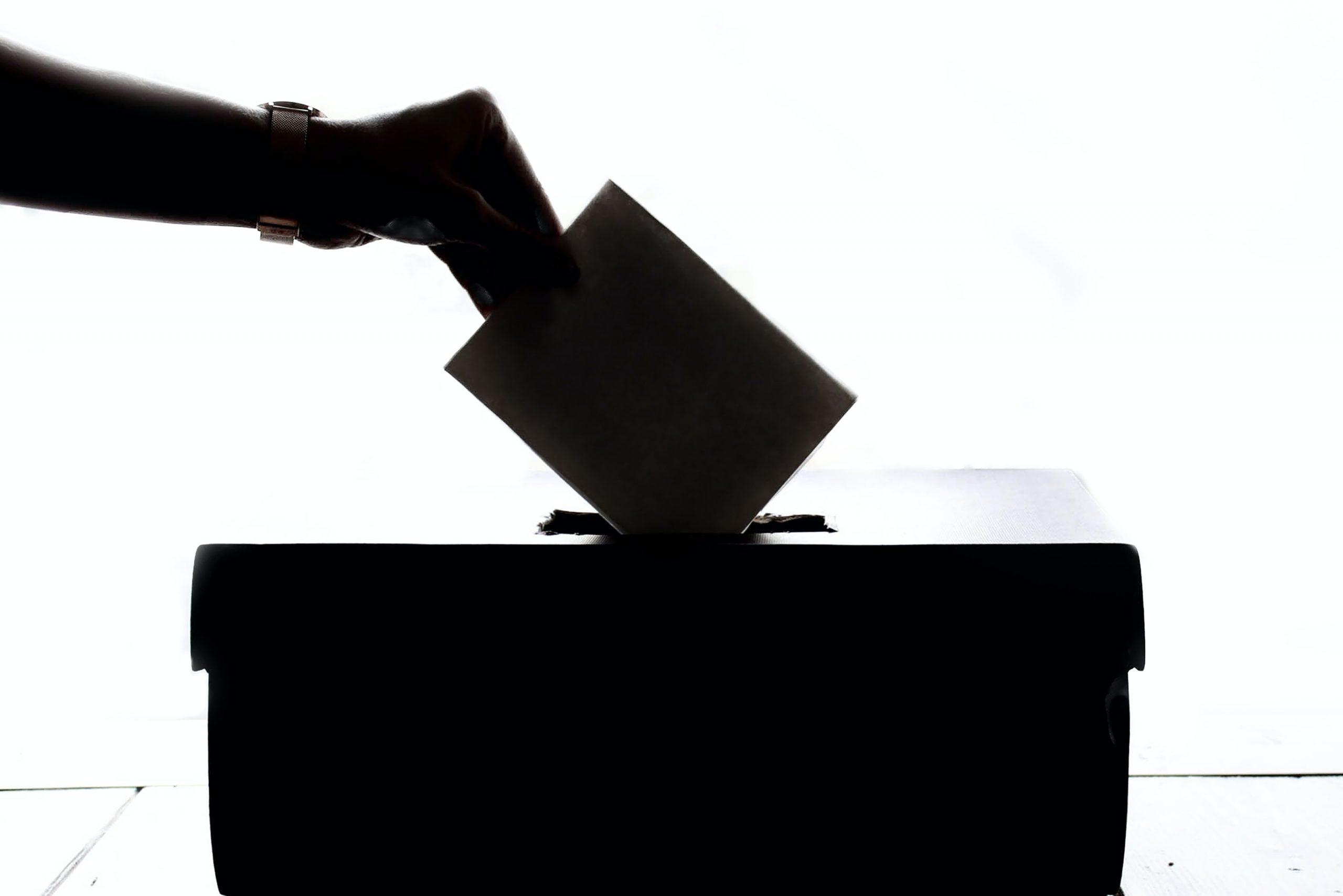 Szavazás a blokklánc segítségével | CryptoFalka