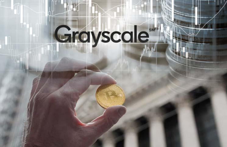 Grayscale I Cryptofalka