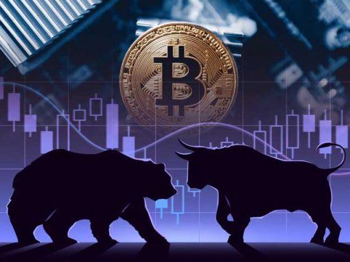 Bitcoin medve piac elemzés I Cryptofalka