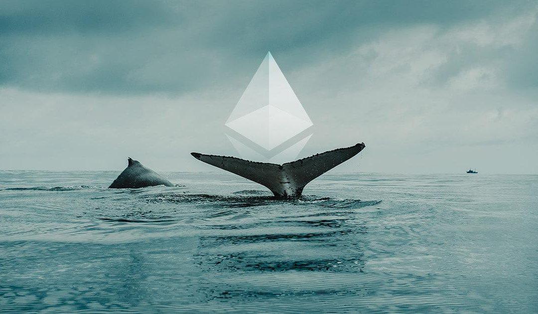 Az Ethereum bálnák a teljes ETH készlet 69%-át birtokolják
