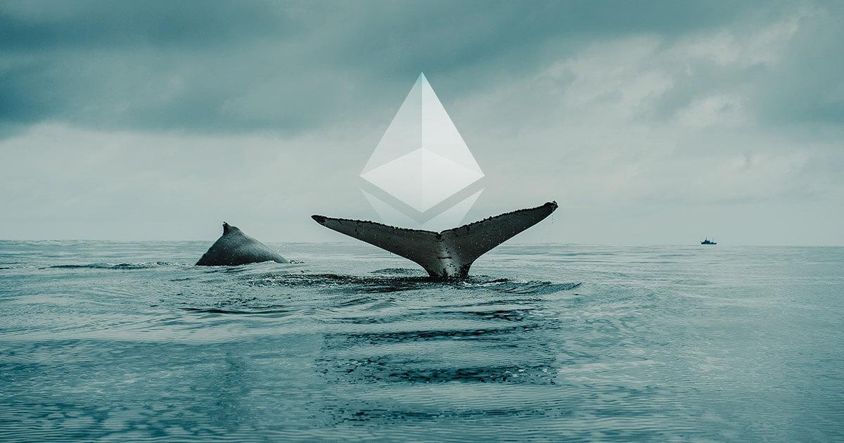 Ethereum bálnák száma