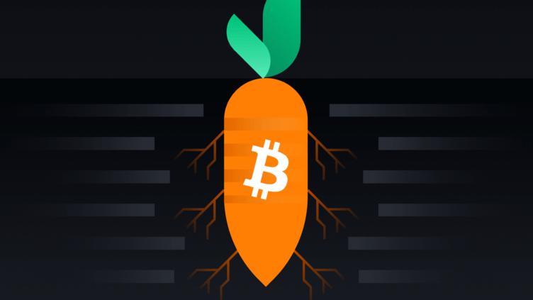 bitcoin taproot fork I Cryptofalka
