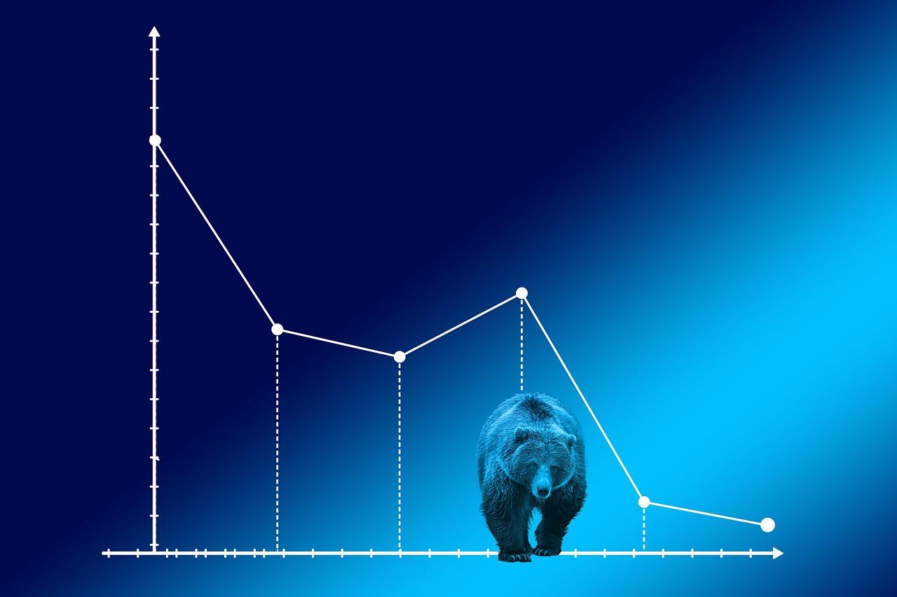 Mi az a medve piac és, hogy tudod túlélni?