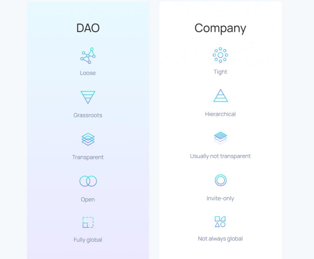 dao-vs-company