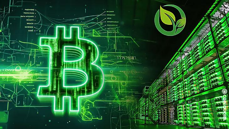Megújuló energia I Cryptofalka