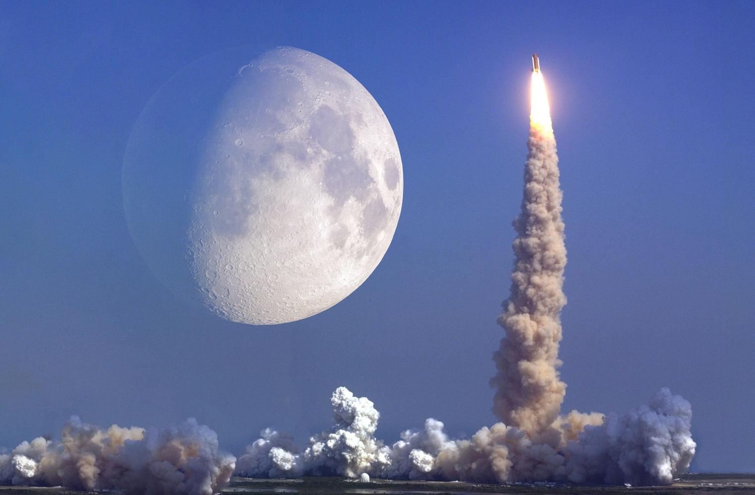 To the moon I Cryptofalka