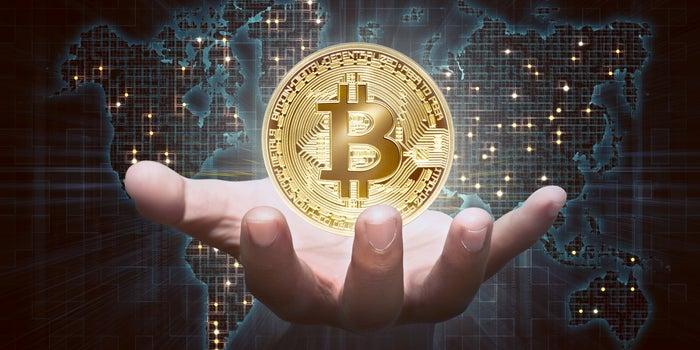 Holding Bitcoin   Cryptofalka