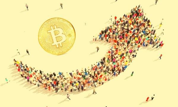 Kriptovaluta elfogadás   Cryptofalka