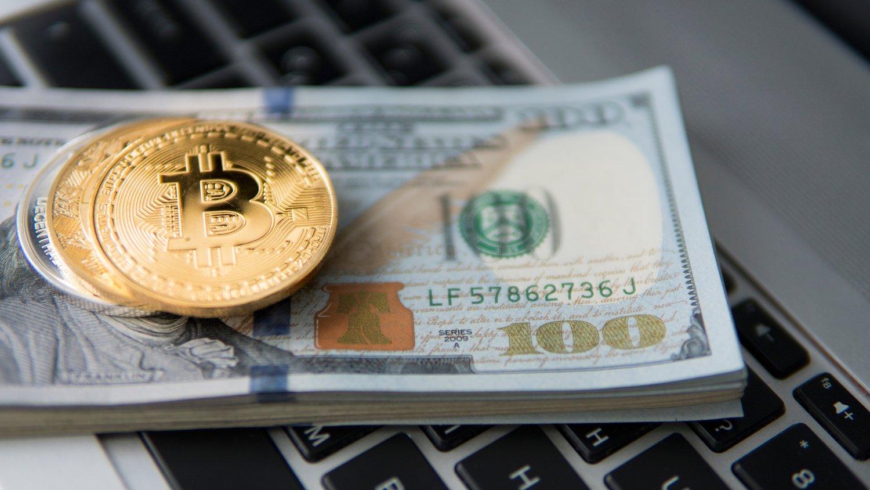 intézményi befektetés I Cryptofalka